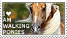 I love American Walking Ponies by WishmasterAlchemist