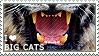 I love Big Cats by WishmasterAlchemist