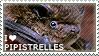 I love Pipistrelles by WishmasterAlchemist