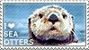 I love Sea Otters