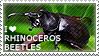 I love Rhinoceros Beetles by WishmasterAlchemist