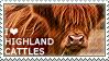 I love Highland Cattle