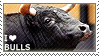 I love Bulls