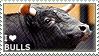 I love Bulls by WishmasterAlchemist