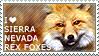 I love Sierra Nevada Rex Foxes by WishmasterAlchemist