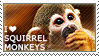 I love Squirrel Monkeys by WishmasterAlchemist