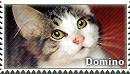 [C.58] Domino for DeadlyRadioActive by WishmasterAlchemist