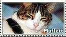 [C.62] Muffett for DeadlyRadioActive by WishmasterAlchemist