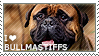 I love Bullmastiffs by WishmasterAlchemist