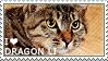 I love Dragon Li by WishmasterAlchemist