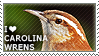I love Carolina Wrens by WishmasterAlchemist
