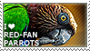 I love Red-fan Parrots by WishmasterAlchemist