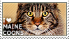 I love Maine Coons [Brown Tabby] by WishmasterAlchemist