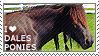 I love Dales Ponies by WishmasterAlchemist
