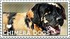 I love Chimera Dogs by WishmasterAlchemist