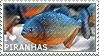 I love Piranhas by WishmasterAlchemist