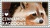 I love Cinnamon Raccoons