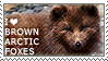 I love Brown Arctic Foxes by WishmasterAlchemist