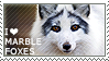 I love Marble Foxes
