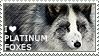 I love Platinum Foxes