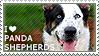 I love Panda Shepherds by WishmasterAlchemist