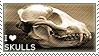 [C.81] I love Skulls for HannahSealy by WishmasterAlchemist