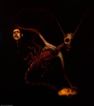 The Murder Bug
