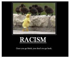 Demotivational racism by Nightsangel666