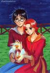 Harry x Ginny - 2 snitches