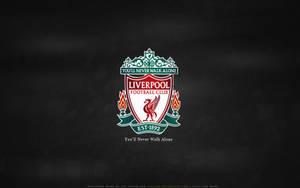 Liverpool FC: YNWA by lfcjosh