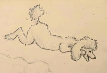 Poodle Doodle by sabraka