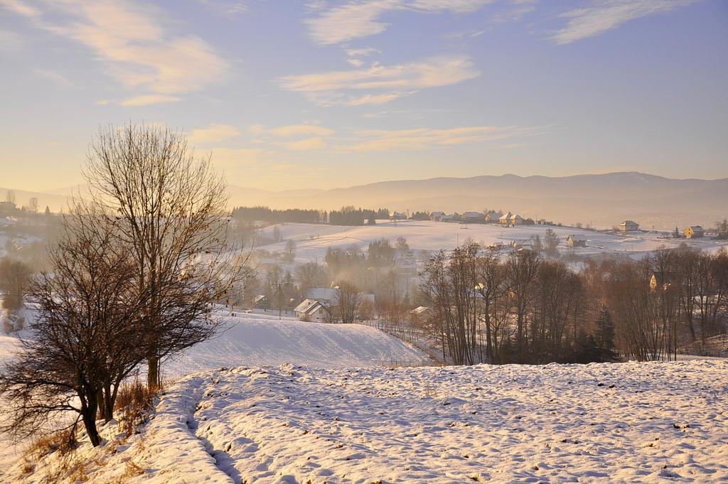 Zimowy pejzaz. by Fiedka