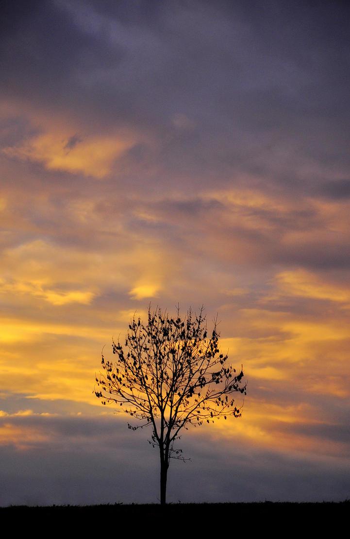 Niebo malowane. by Fiedka