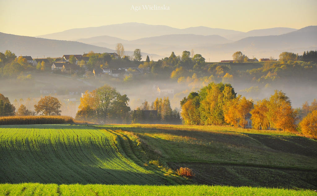 Autumn view. by Fiedka