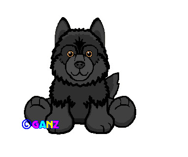 webkinz signature black wolf by wahots55