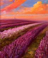 Lavender evening by VladStelz