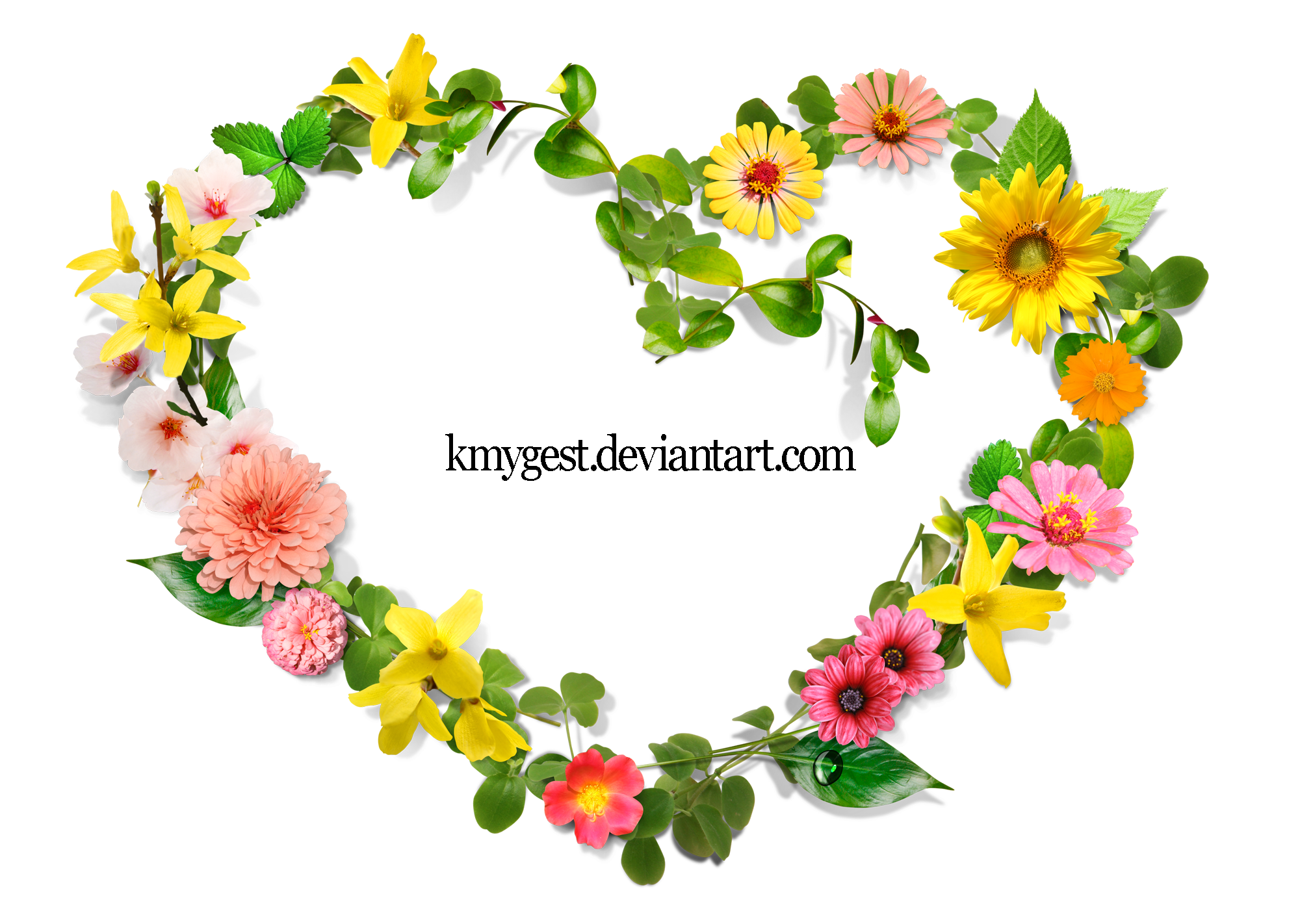 Flowers Heart by KmyGraphic on DeviantArt