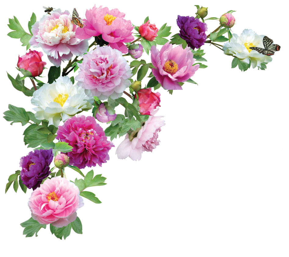 Garden Flowers Png Png garden flowers* by