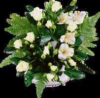 Bouquet by KmyGraphic