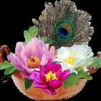 Flowers by KmyGraphic