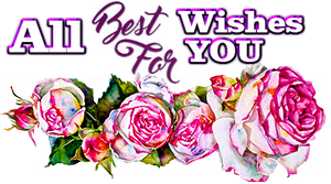 All best Wishes for you