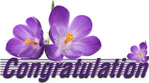 Congratulation by KmyGraphic