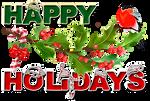 Happy Holidays by KmyGraphic