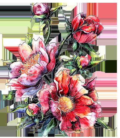 Flowers for Teresa