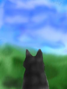 Jaystarcat's Profile Picture