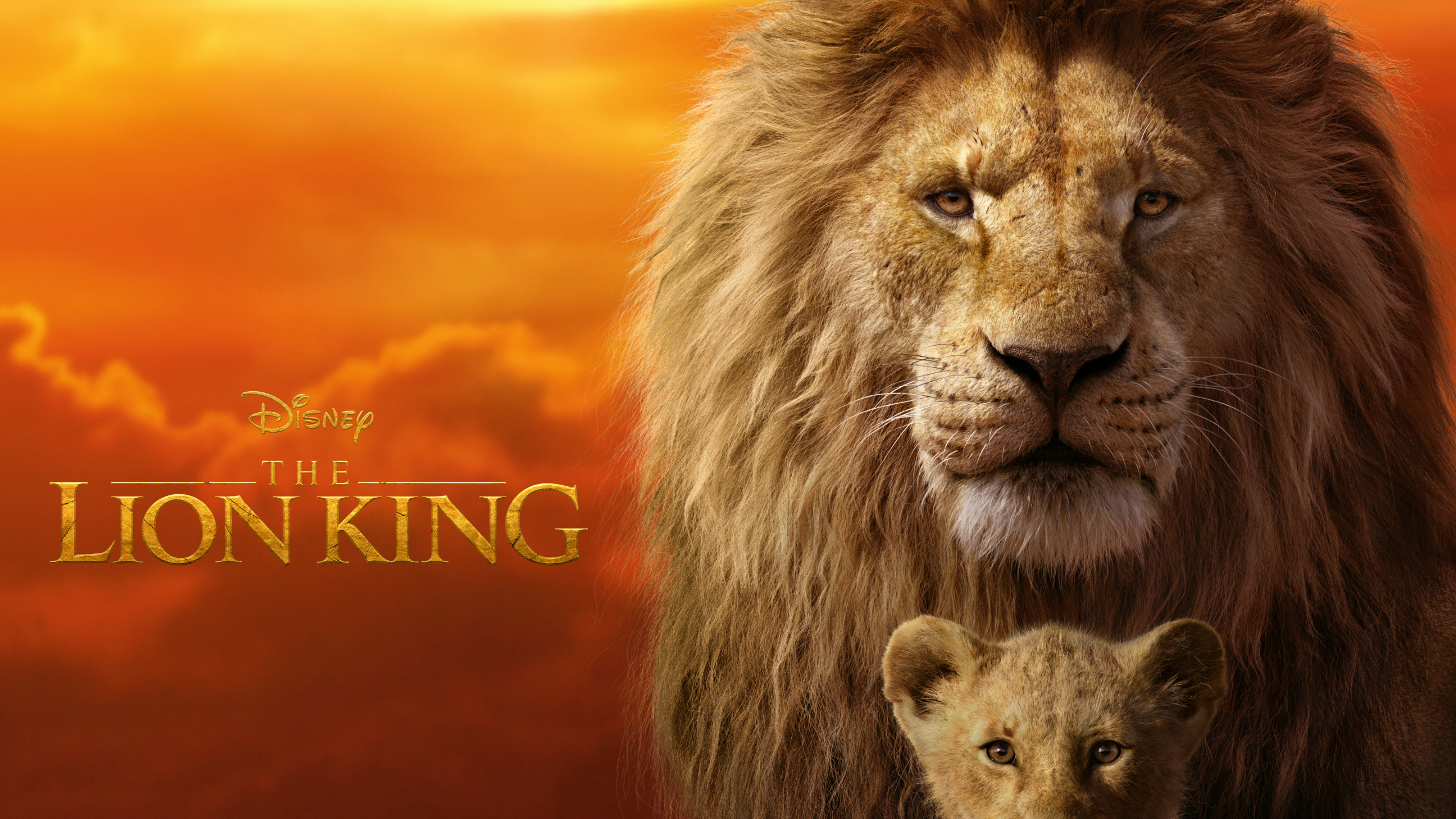 The Lion King (2019) Wallpaper by crillyboy25 on DeviantArt