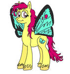 A Pony With Butterfly Wings (in colour version!)