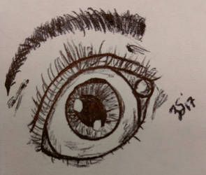 Practicing Eye