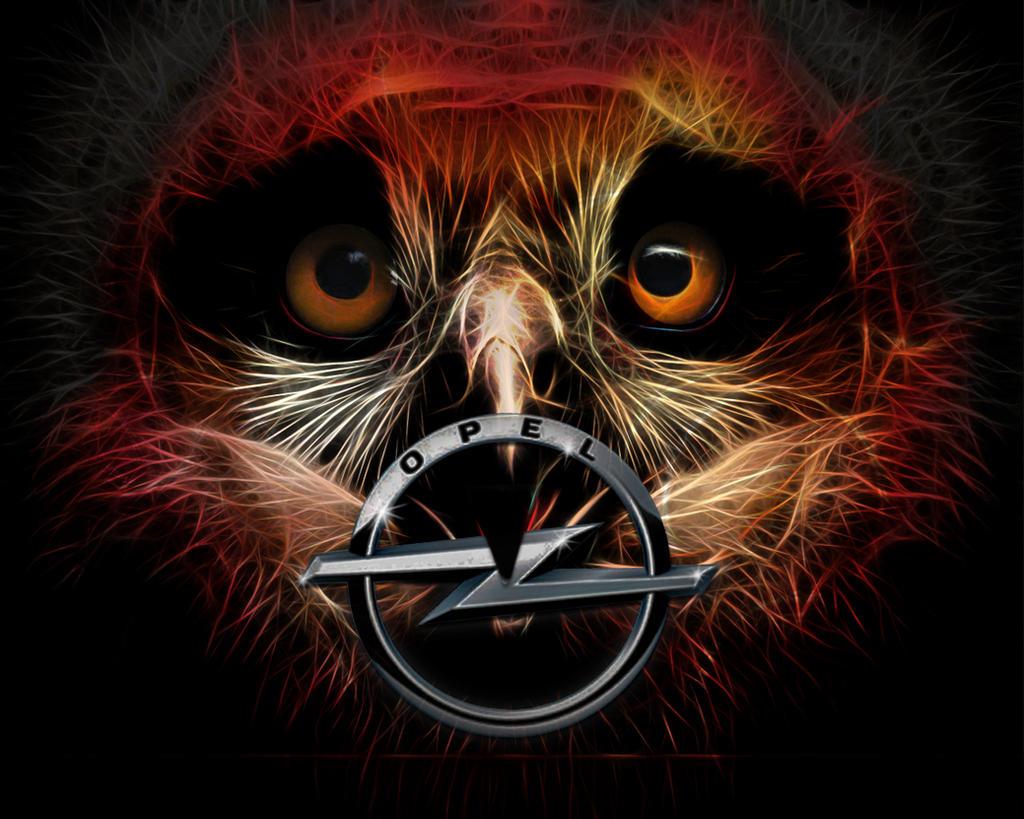 Owl by brotherguy by BrotherGuy