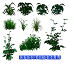 Some PNG Plants8 by brotherguy